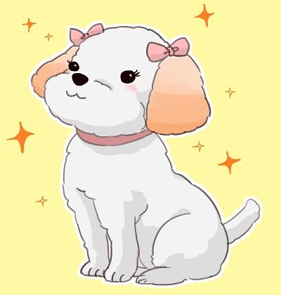 カラーリングした犬