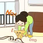 犬の部屋でのトラブル