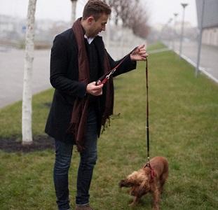 犬をしつける飼い主