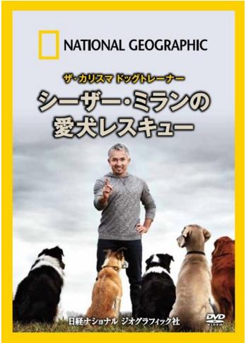 シーザー・ミランの愛犬レスキュー