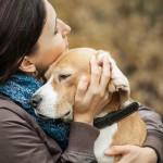 保健所での犬の引き取り