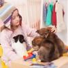 犬とお部屋で遊ぶならコレ!おすすめな3つの室内遊びの方法