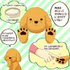 犬の肉球(にくきゅう)が怪我したときの治療方法や病気